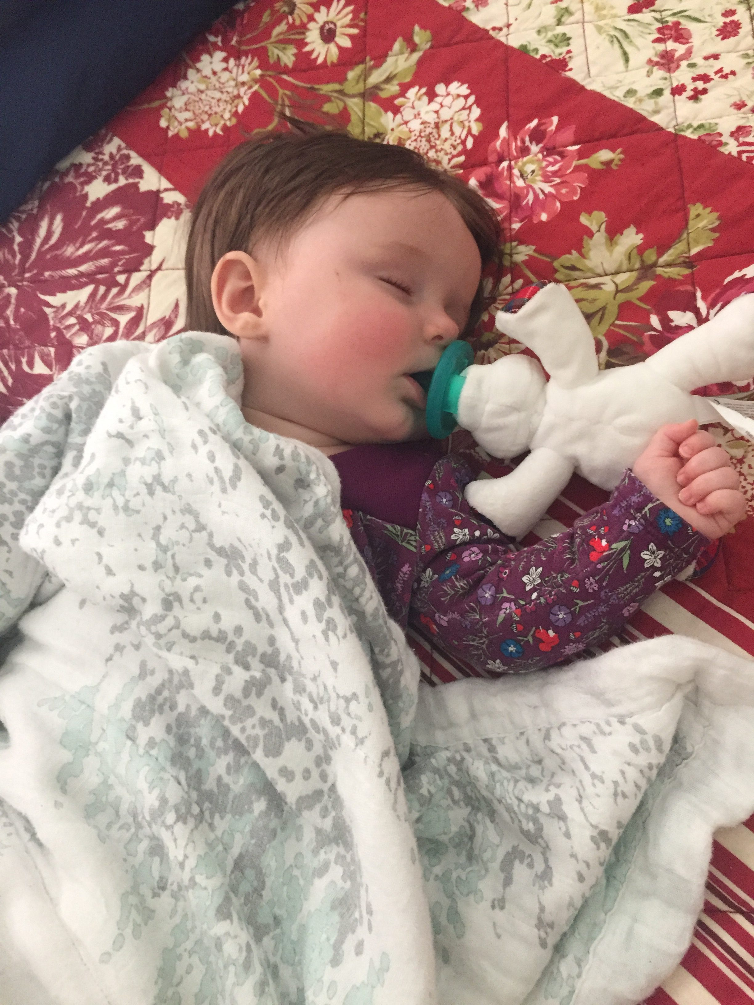Traveling with a Baby 3 to 6 months old PT Adventures Travel PT